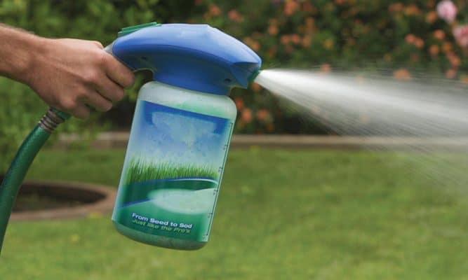 Best Liquid Grass Seed