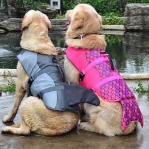 Jacket Swimwear for Dogs