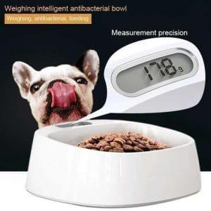 Smart Pet Bowl