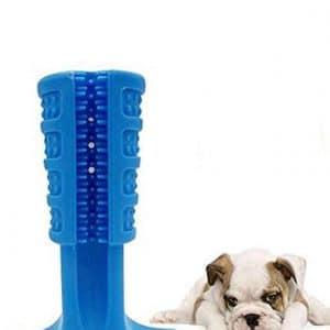 Doggie DIY Toothbrush
