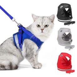 Kitten Harness And Leash Set For Cats