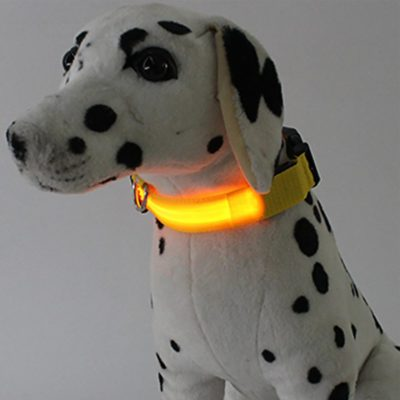 Waterproof LED Safety Collar